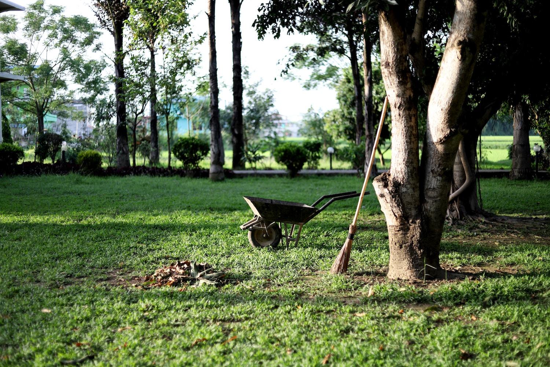 Wat heeft u nodig bij vernieuwing van uw tuin? - Afzetbak.nl