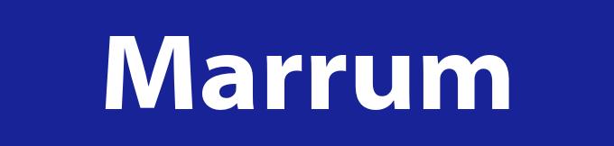 Afvalcontainer huren in Marrum
