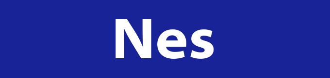Afvalcontainer huren in Nes